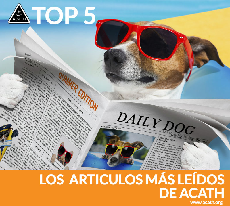Top_5_post_mas_leidos_acath